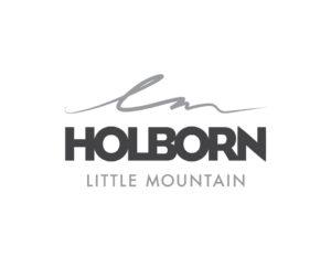 Little Mountain logo